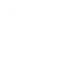 wifi-connection-signal-symbol-bubble